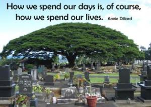 how-we-spend-life